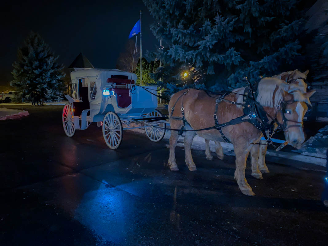 KD Ranch Carriage Ride